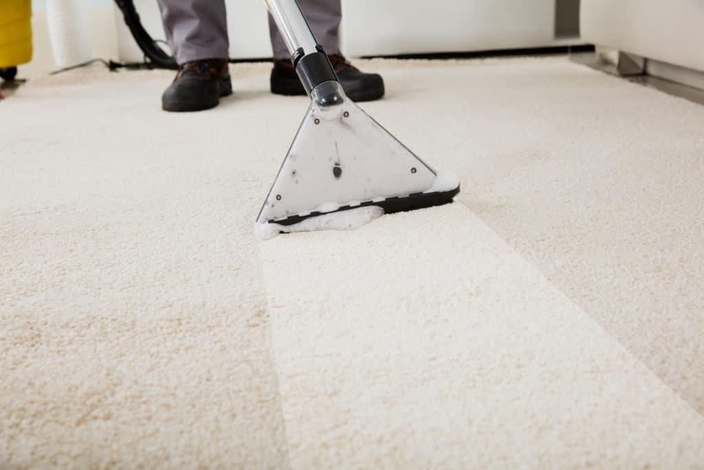 Depositphotos_139880308_original-1024x683 Carpet Cleaning Company Lee's Summit MO